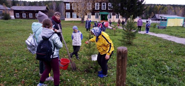 День леса в МБОУ Дудовская СОШ