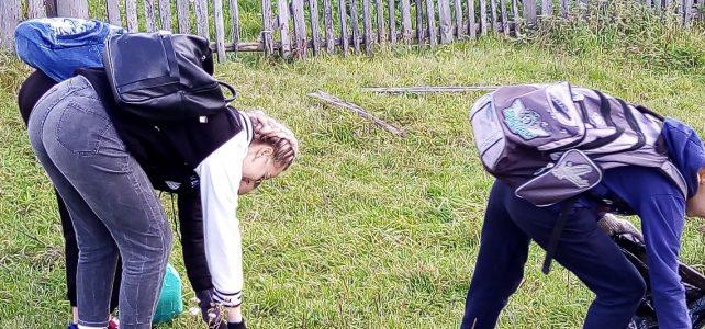 О проведении школьной акции «Чистый берег, чистое село»
